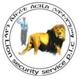 Lion Security Service  PLC