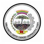 Yirgacheffe Coffee Farmers Cooperative Union (YCFCU) LTD