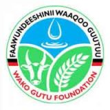 WAKO GUTU FOUNDATION (WGF)