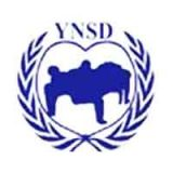 Youth Network for Sustainable Development