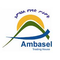 Ambasel Trading House Pvt. Ltd. Co