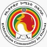 Zimbali Import | Ethiopian Reporter Jobs | Ethiojobs