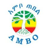 Ambo Mineral Water S.C